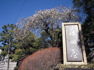 yuga-02.jpg